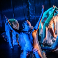 BWW Review: THE PARTICULARS burns slow at The Theatre Centre Photo