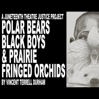 BWW Previews: ON JUNETEENTH, FREE READING OF POLAR BEARS, BLACK BOYS, & PRAIRIE FRING Photo