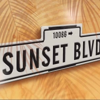 SUNSET BOULEVARD Comes to the John Engeman Theater
