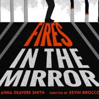 Epic Theatre Co Kicks Off Eighth Season with FIRES IN THE MIRROR Photo