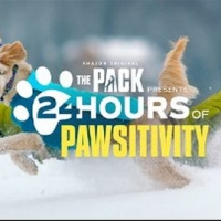 Amazon's THE PACK Presents 24 Hours of Pawsitivity Photo