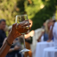 Montalvo Arts Center Hosts Annual 'Food and Wine Classic' Photo