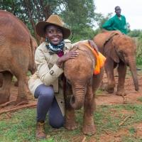 Lupita Nyong'o to Receive Wildlife Protection Award at WildAid Gala Photo