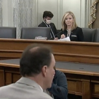 Senate Holds Hearing Regarding Relief For the Live Entertainment Industry Photo