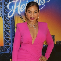 Daphne Rubin-Vega, Jenny Turner Hall And More To Launch A SIMPLE HERSTORY Presented b Photo