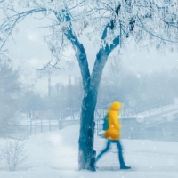 BWW Blog: When You Have The Winter Blues