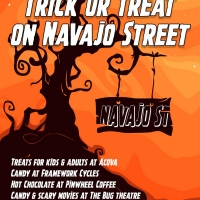 2nd Annual Trick Or Treat On Navajo Street Photo