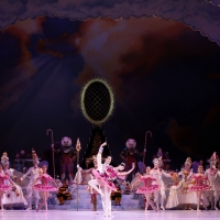 BWW Review: Houston Ballet's Virtual Program NUTCRACKER SWEETS is the Holiday Treat Y Photo