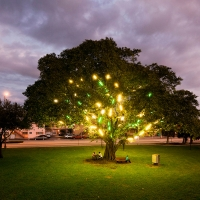 Museum of Contemporary Art, North Miami Restores 'Electric Tree' Public Artwork Photo