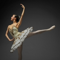 National Ballet Of Japan's New Year Ballet to Stream For Free Online Photo
