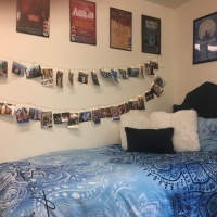 BWW Blog: A Reflection on My Freshman Year of College Photo