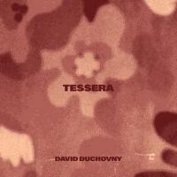 David Duchovny Releases New Single 'Tessera' Photo