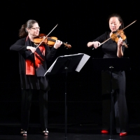 Chamber Dance Violinists Will Perform and Discuss Life in Shutdown Via Zoom Photo