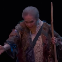 VIDEO: Watch Stratford Festival's THE TEMPEST; Now Streaming! Photo