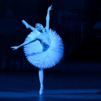 Bolshoi Ballet June Performances At The Auditorium Theatre Postponed