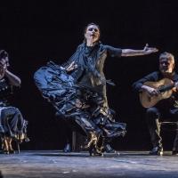 BWW Review: NOCHE FLAMENCA'S 'ENTRE TU Y YO' at Z Space Showcases Legendary Dancer Soledad Barrio