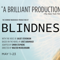 Shakespeare Theatre Company to Reopen its Doors With Donmar Warehouse's BLINDNESS Article