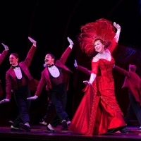 BWW Review: A Jubilant  HELLO DOLLY! at Shea's Buffalo Theatre Photo
