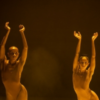 WOMEN / CREATE! A Virtual Festival Of Dance In Partnership With New York Live Arts Photo