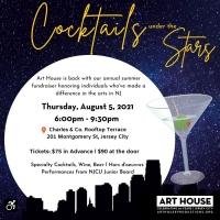 Art House Productions Announces Cocktails Under The Stars Fundraiser Photo