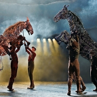 WAR HORSE Will Come to Sydney's Lyric Theatre Photo