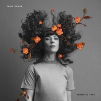 Jamie Drake Shares 'Redwood Tree' Video With The Talkhouse