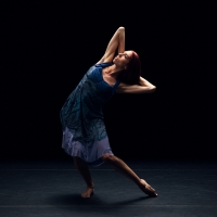 BWW Previews: NICKERSON-ROSSI DANCE at CVRep Playhouse Photo