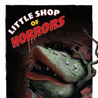 BWW Review: LITTLE SHOP OF HORRORS at ACT Of Connecticut Photo