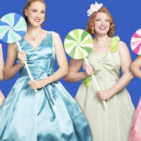 THE MARVELOUS WONDERETTES Bring 50's And 60's Music To Desert Stages Theatre In March Photo