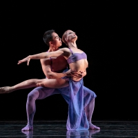 Smuin Offers Stanton Welch's INDIGO for Free Streaming in 'Hump Day Ballets' Series Photo