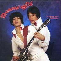 Light in the Attic Records Commemorates the 40th Anniversary of Donnie & Joe Emerson's 'Dreamin' Wild'