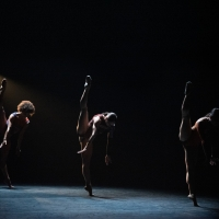 BWW Review: BWW REVIEW:     COMPLEXIONS CONTEMPORARY BALLET BRINGS ITS FLAVOR TO THE  Photo