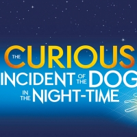 THE CURIOUS INCIDENT OF THE DOG IN THE NIGHTTIME to Play at New Stage Theatre
