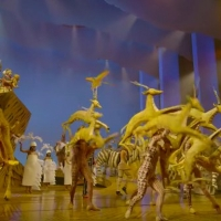 VIDEOS: Go Behind the Scenes of THE LION KING in New Educational Series Photo