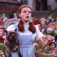 Judy Garland's WIZARD OF OZ 'Dorothy' Dress Found at Catholic University Photo