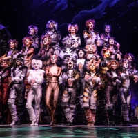 Timothy Gulan of CATS at Majestic Theatre