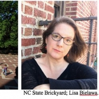Composer Lisa Bielawa Premieres New Musical Work In Virtual Reality With North Caroli Photo