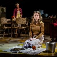 BWW Review: Goodman Theatre's Encore of SMOKEFALL (2013) Photo