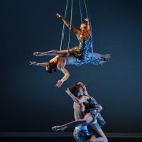 Luminario Ballet Announces Gala Bacchanal, Honoring Emmy Winner Anita Mann Photo
