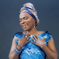 Josh Groban, Cyndi Lauper & More to be Featured in Angélique Kidjo's Carnegie Hall Pe Photo