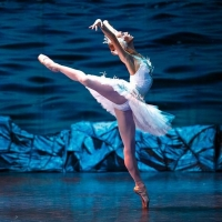 The Russian State Ballet & Opera House Presents SWAN LAKE at Venue Cymru in November Photo