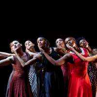 BWW REVIEW:    BAM FISHER PRESENTS LEGACY WITH TWO DANCE COMPANIES at BAM Fisher