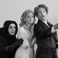 American Premiere Of London's YOUNG FRANKENSTEIN Opens At The Walnut September 11 Photo