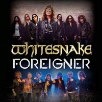 Whitesnake & Foreigner Announce U.K. & Ireland 2022 Tour Photo