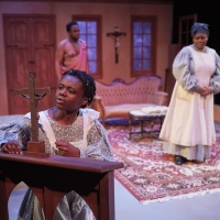 BWW Review: THE CONVERT mesmerizes at Frank Theatre Photo