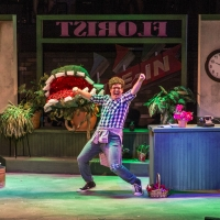 BWW Review: LITTLE SHOP OF HORRORS at Roxy's Downtown Photo