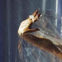 Lisel Streams Debut LP via Hype Machine Photo