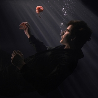 Dimension Unleashes His Debut Album 'Organ' Photo