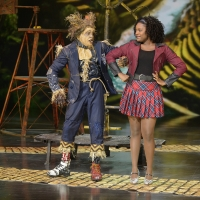 The Shows Must Go On! Will Broadcast THE WIZ LIVE! on June 12 Photo