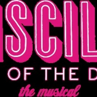 Mercury Theater Chicago Announces Cast Of PRISCILLA QUEEN OF THE DESERT Photo